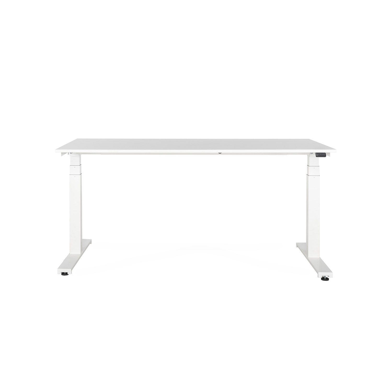 lensvelt sitstand solo office desk